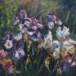 Iris, oil-linen, 18x24, 2013