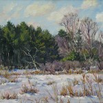 Vosburgh's Swamp Winter, oil-linen,18x24, 2015